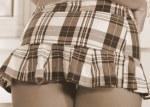 plaid skirt 5